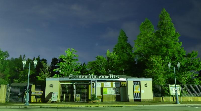 ガーデンミュージアムの夜空
