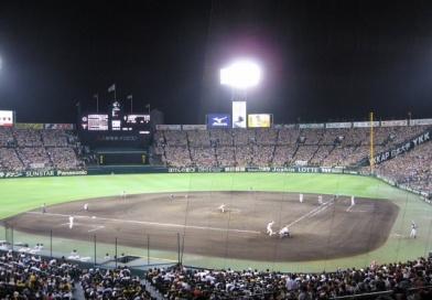 2017阪神甲子園球場 タイガース公式戦チケット
